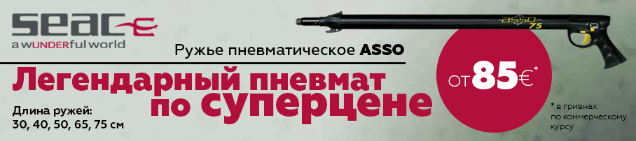 http://podvoh.in.ua/catalog/pnevmatika/seac_sub_asso_40_b_r/