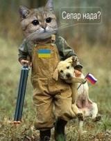 Анатолий  (Lyan331) аватар